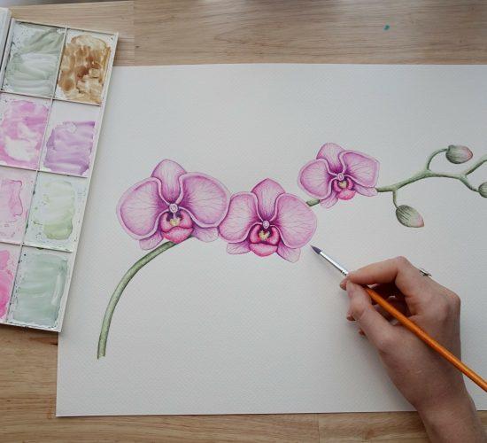 Watercolourlust